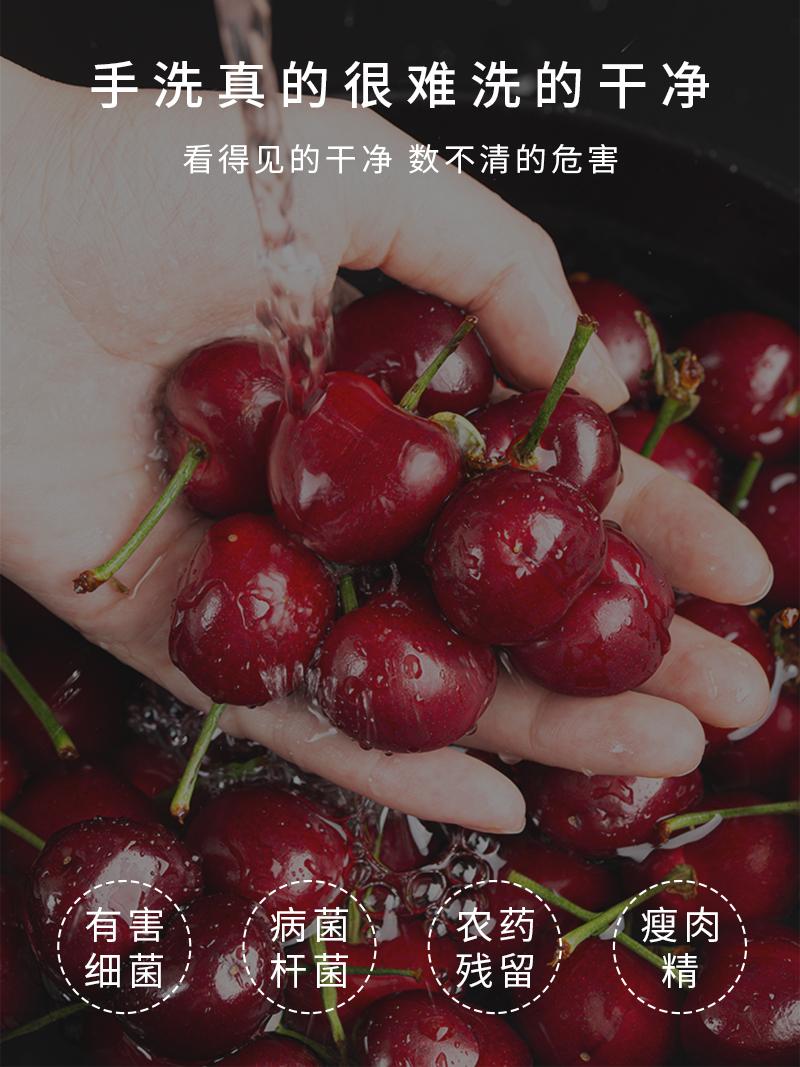 STY05果蔬清洗机_2