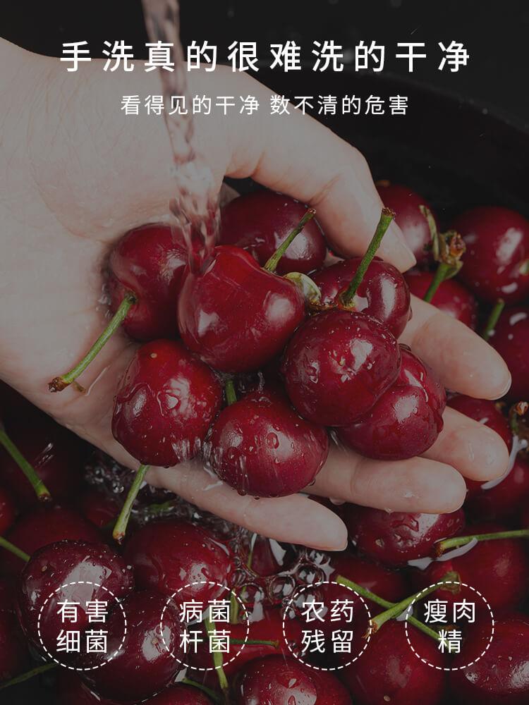 果蔬净化清洗机_2