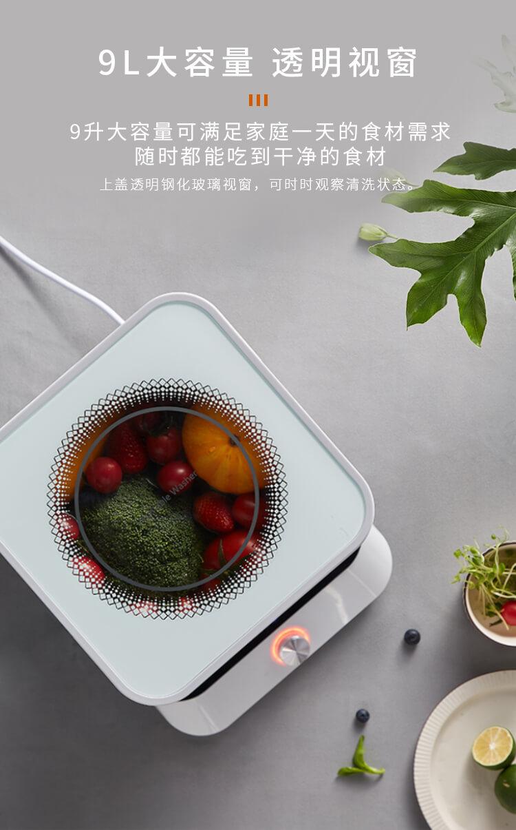 果蔬净化清洗机_10